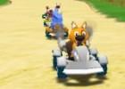 العاب سباق سيارات الحيوانات
